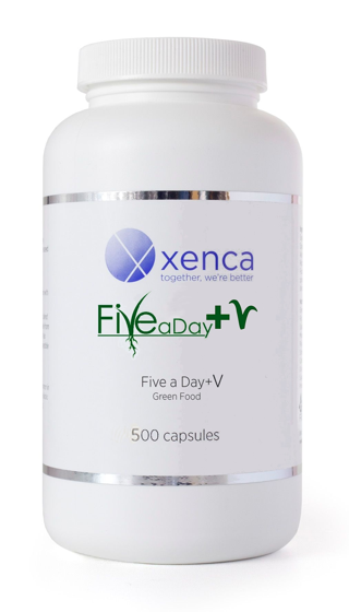 Five a Day +V 500 Capsules